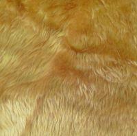 Fur teddy