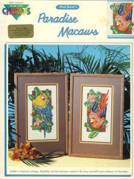 Paradise Macaws 10205