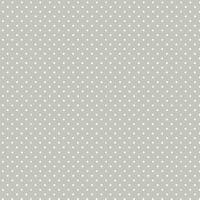 830-S60 Grey Micro Spot