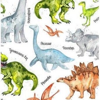 C2719 Dinosaurs