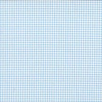 920-B4 Gingham Pale Blue
