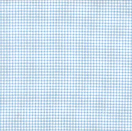 920-B4 Gingham Pale Blue