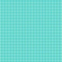 920-T Gingham Turquoise