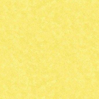 2800-Y82 Daffodil