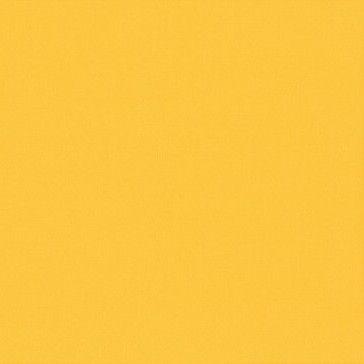 Y06 Bright Yellow