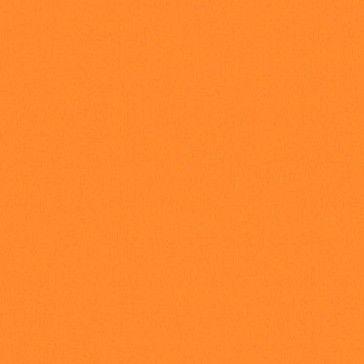 N60 Pumpkin