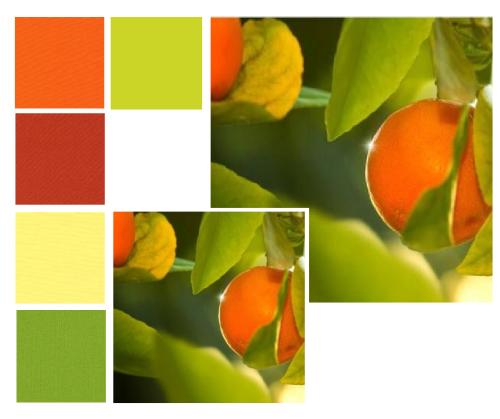 FQB16 Sweet Tangerines Fat Quarter Bundle