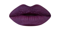 <b>Pretty Zombie Cosmetics Morticia Liquid Lipstick</b>