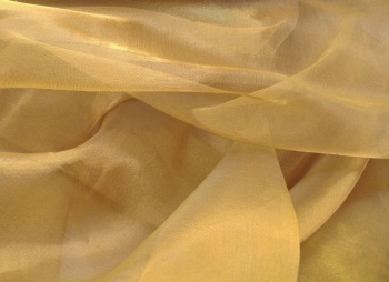 Gold  Organza Snow Sheer