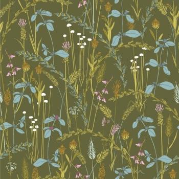 Little Grasses