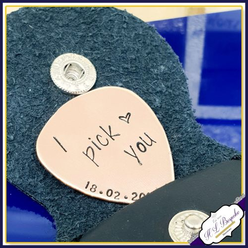 I Pick You Guitar Pick - Personalised Guitar Pick - I Plucking Love You - V