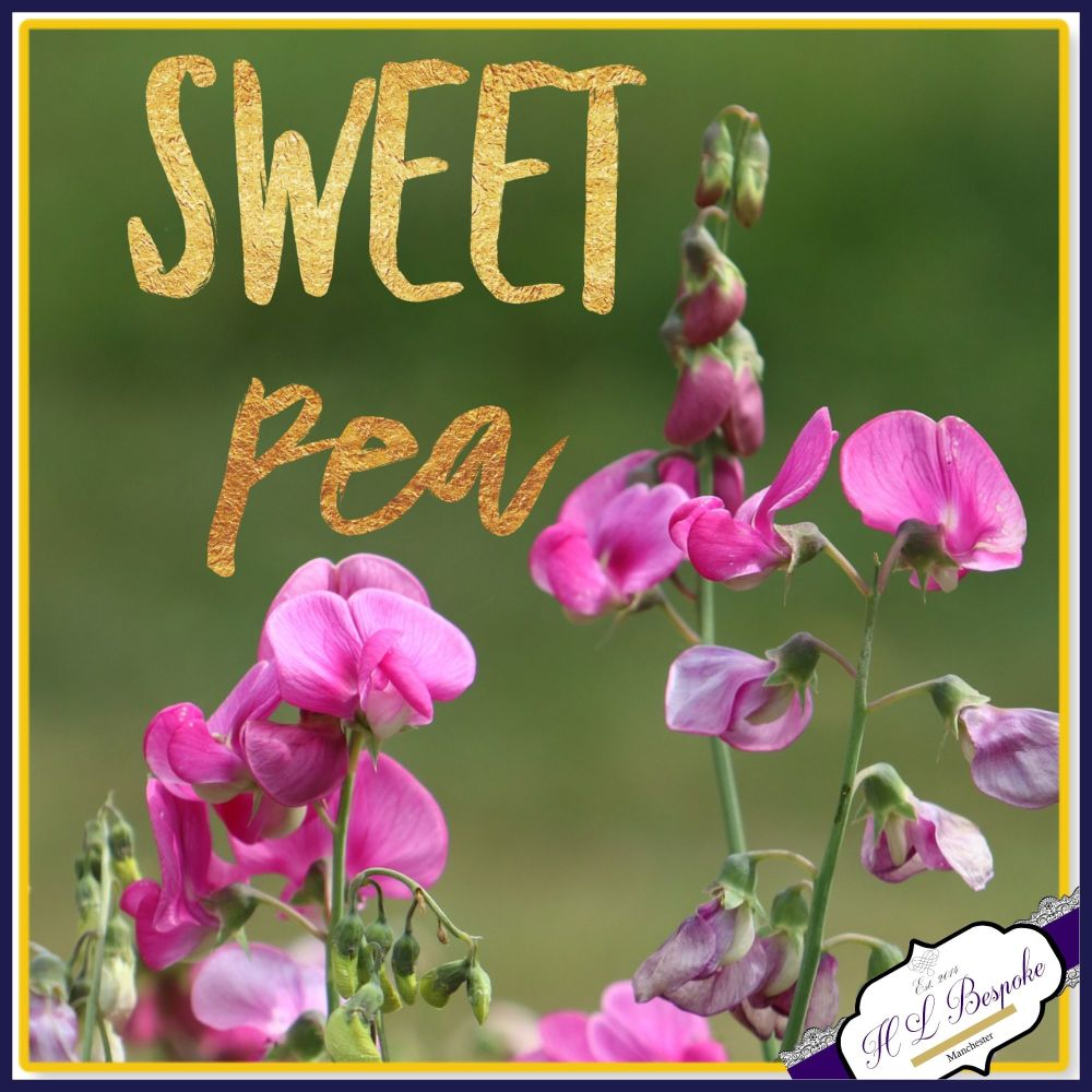 Sweet Pea Flower Soy Wax Melts - Highly Scented Floral Wax Tarts - Floral S