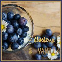 Blueberry & Vanilla Soy Wax Melts - Highly Scented Wax Tarts - Fruity Wax Melts - Vegan Friendly Wax Melts - Eco Friendly Melts
