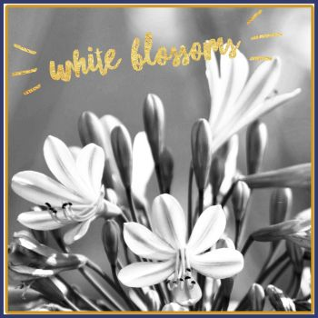 White Blossoms Soy Wax Melts - Highly Scented Perfume Inspired Wax Tarts - Floral Perfume Dupe Vegan Friendly Wax Mel - Dupe Mineral Melt