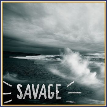 Savage Soy Wax Melts - Highly Scented Aftershave Inspired Wax Tarts - Crisp Bergamot Aftershave Dupe Vegan Friendly Wax Mel - Dupe Mineral