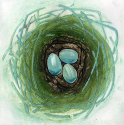 Robin Nest original collagraph print by Jane Duke