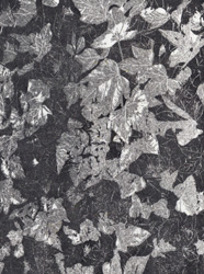 A two tone woodcut print of ivy leaves, by Jane Duke
