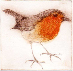 Drypoint etching monoprint of a robin by Jane Duke