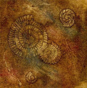 Ammonites I (4/20)