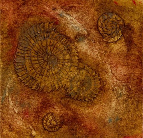 Ammonites I (2/20)