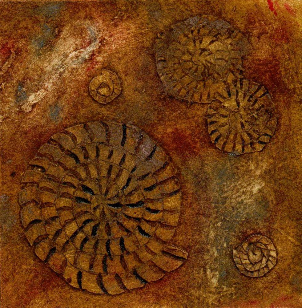 Ammonites II (2/20)