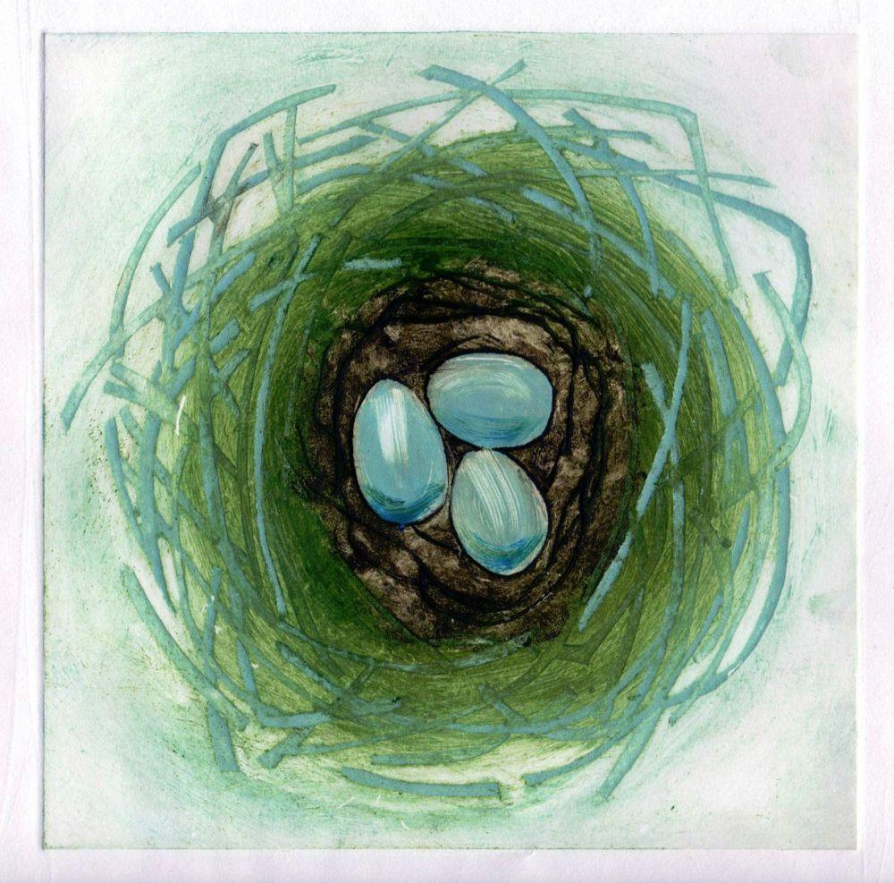 Robin Nest (1/7)