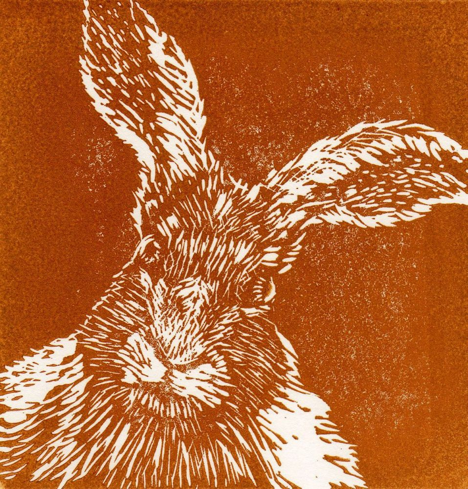 March Hare (Ochre)