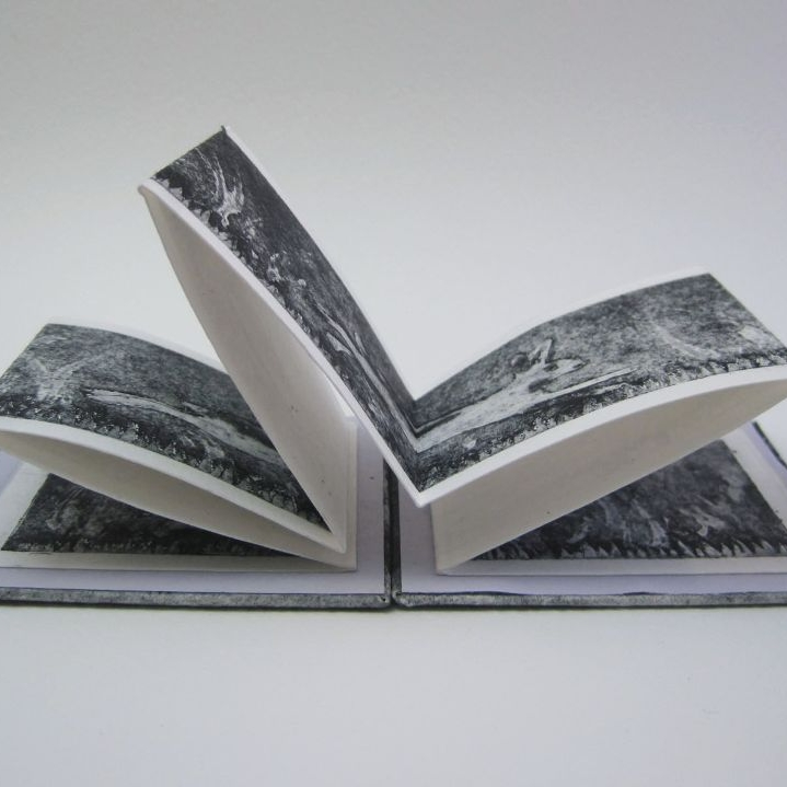 <!--004-->Artist's Books