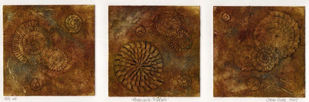 Ammonite Triptych (2/15)
