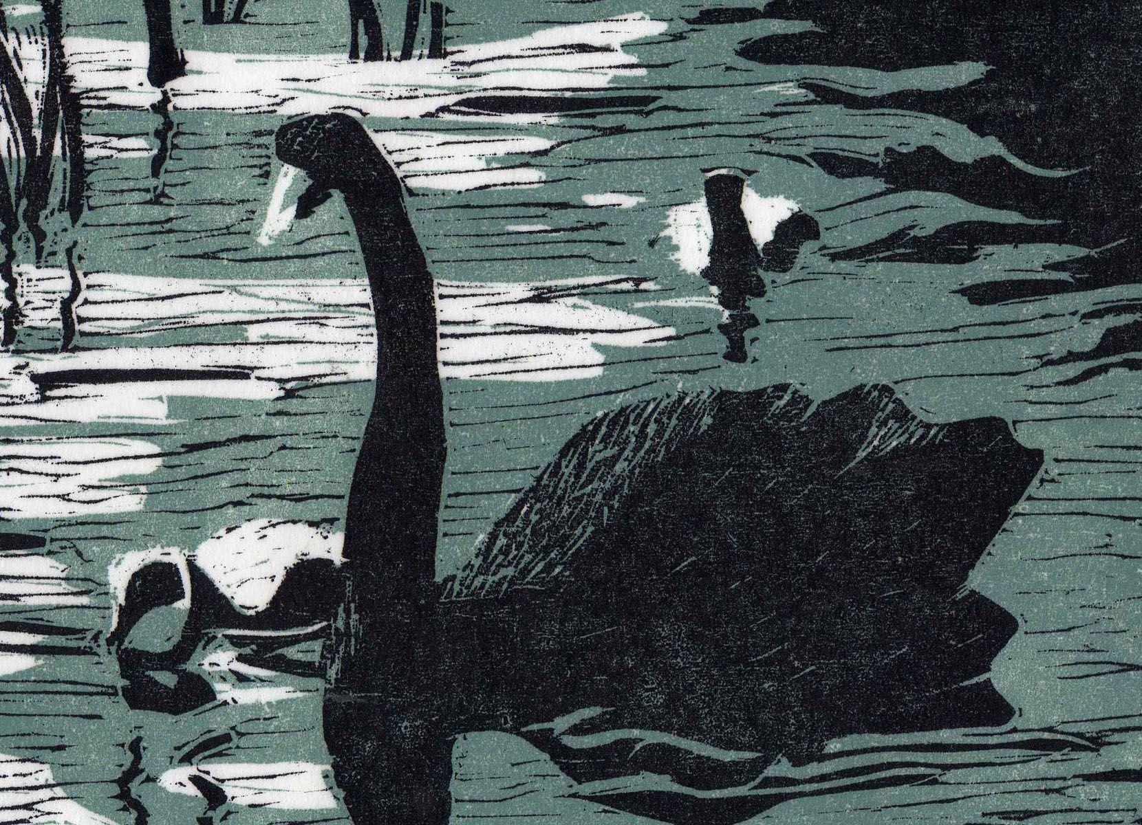 woodcut print of a swan