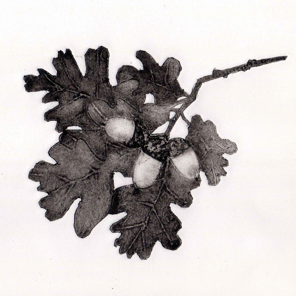 Oak collagraph