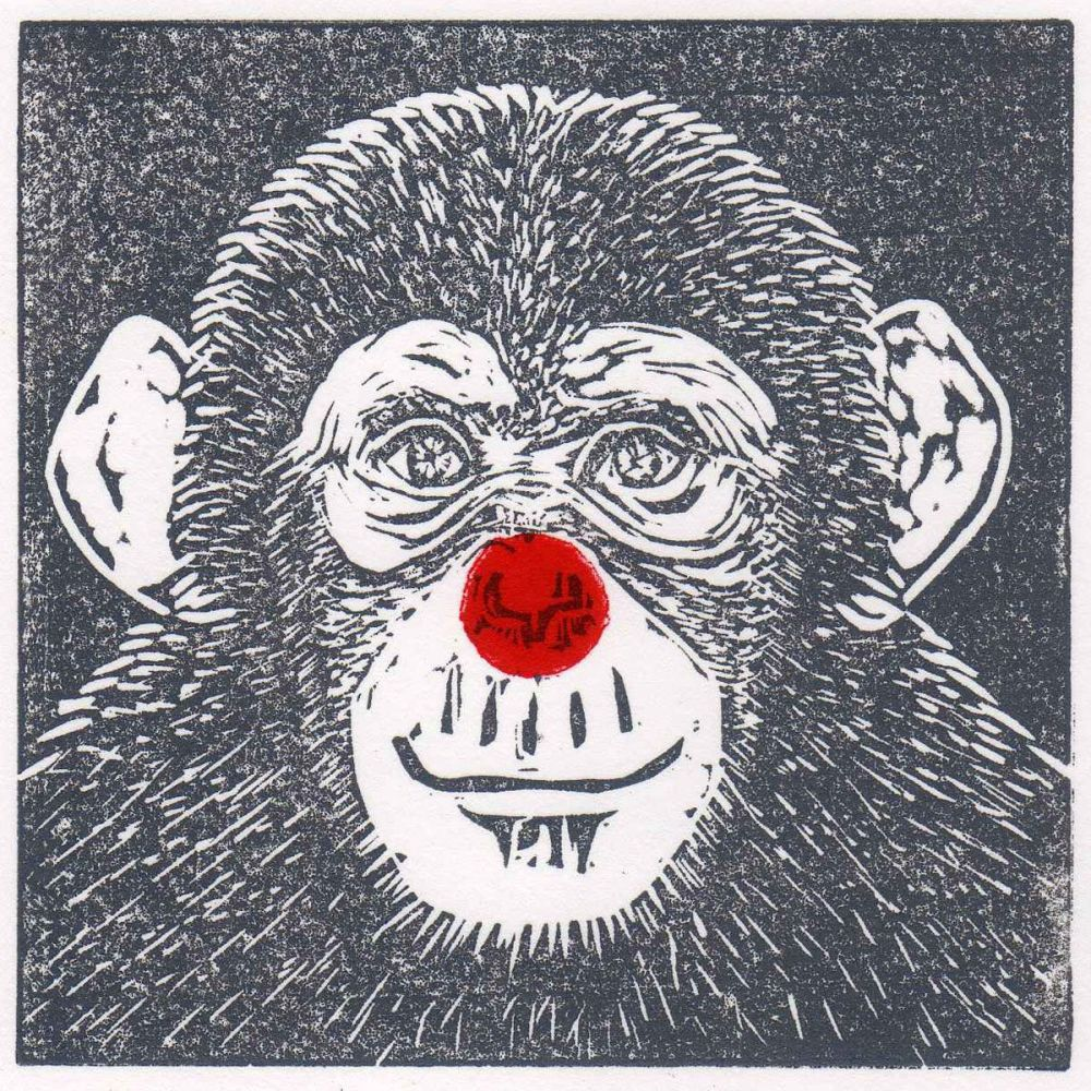 <!--001-->Monkeying Around - Red Nose Day fundraiser 2019