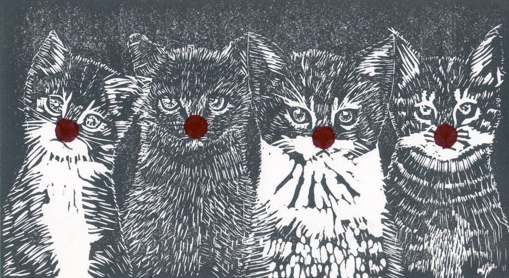 <!--001-->Noses on Kittens- Red Nose Day fundraiser 2021