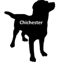 CHICHESTER DOG PASS