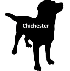 CHICHESTER 7 day DOG PASS