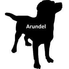 ARUNDEL DOG PASS