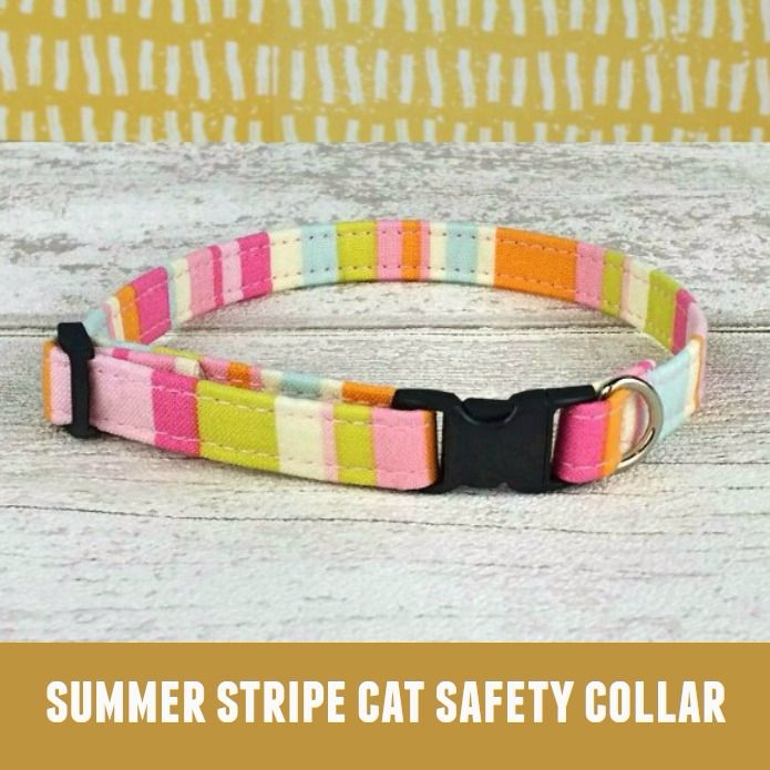 Cat Collar Summer Stripe
