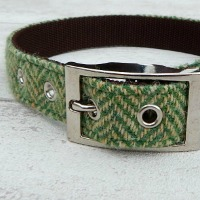 <!-- 001 -->Dog Collars and Leads