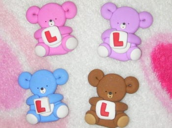 bear with a 'L' plate