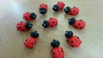 ladybirds (pack of 10)