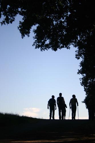 take-a-walk-1388909-1279x1919
