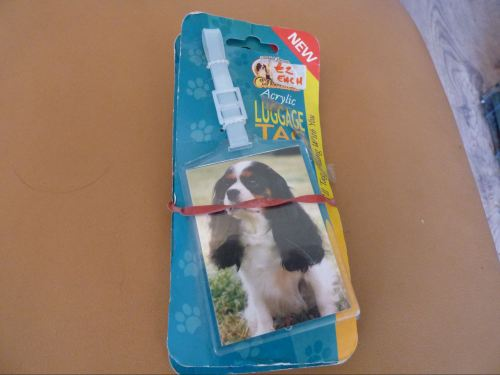 Tri Coloured Cavalier King Charles Spaniel - Acrylic Luggage Tag