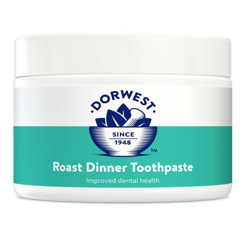 Dog Toothpaste - Roast Dinner - 200g