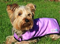 Prestige Pets Cool Dog Cooling Coat - Purple - Xtra Small 28cm  (Due in Sho
