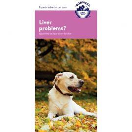 Liver Support Leaftlet