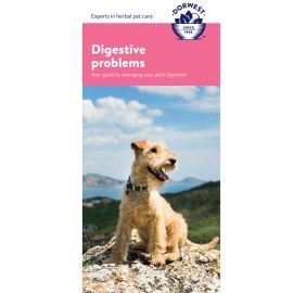 Digestive Problems Leaflet