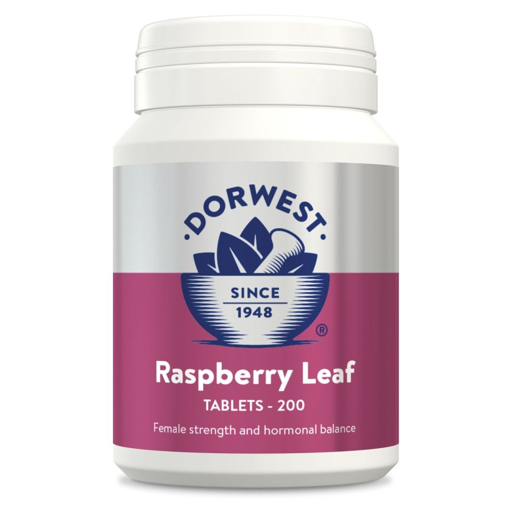 Raspberry Leaf Tables for Dogs & Cats - 100 tablets