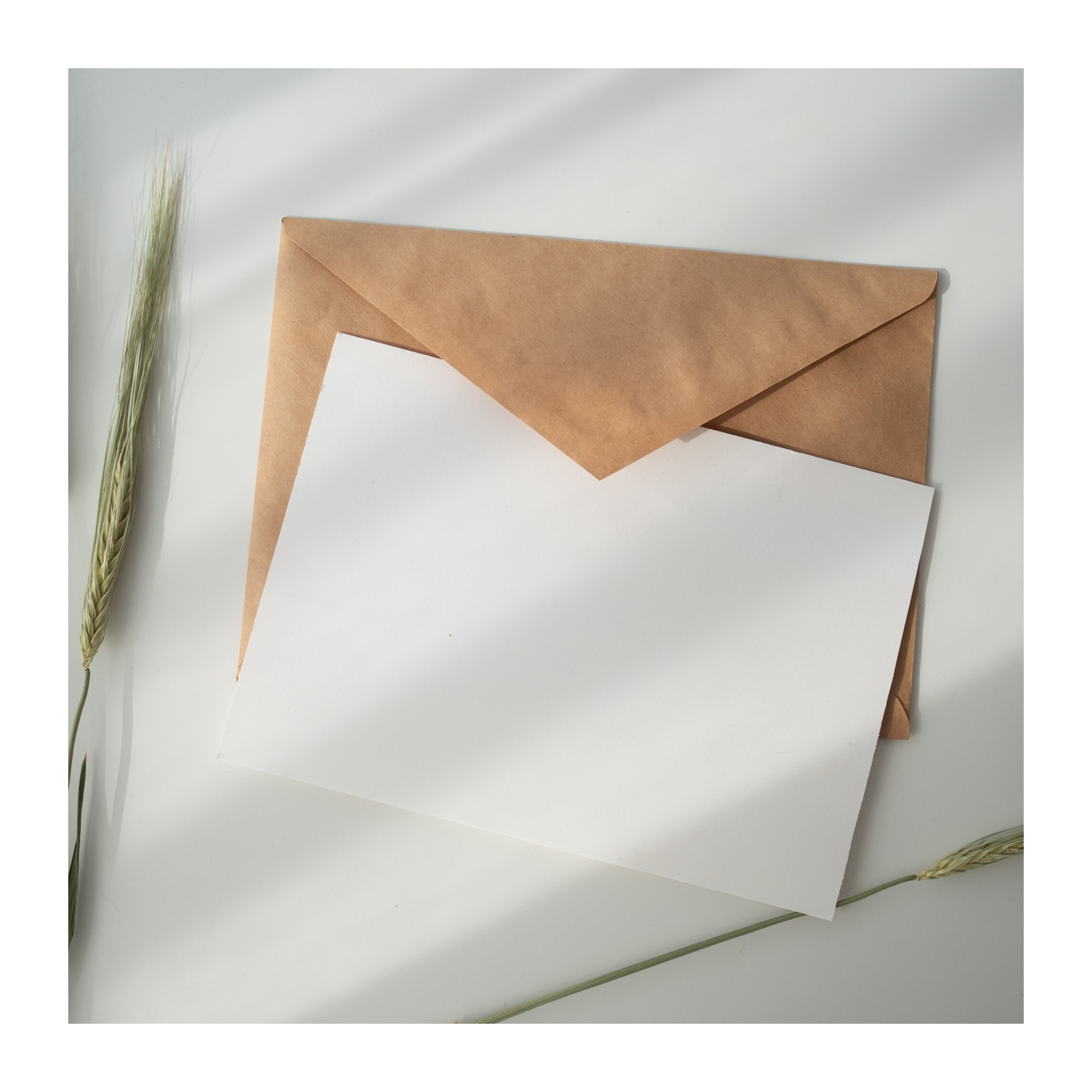 A white card and kraft brown envelope lain on a white surface.