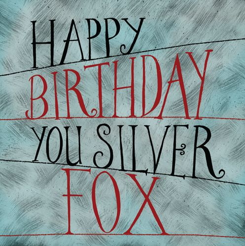 Male Birthday Cards - HAPPY Birthday YOU SILVER Fox - FUNNY Birthday CARD -