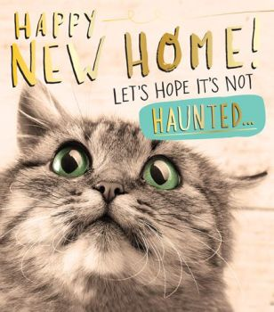 Funny Moving Cards - HOPE it's NOT Haunted - NEW Home Cards - FUNNY New House CARD - HOUSEWARMING Card - CUTE Cat MOVING House CARD - Haunted HOUSE